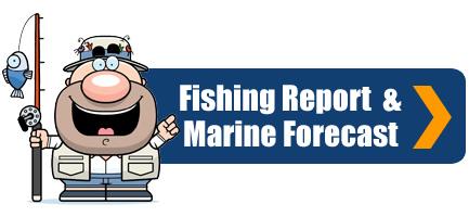 Whangarei Fishing Report and Marine Forecast